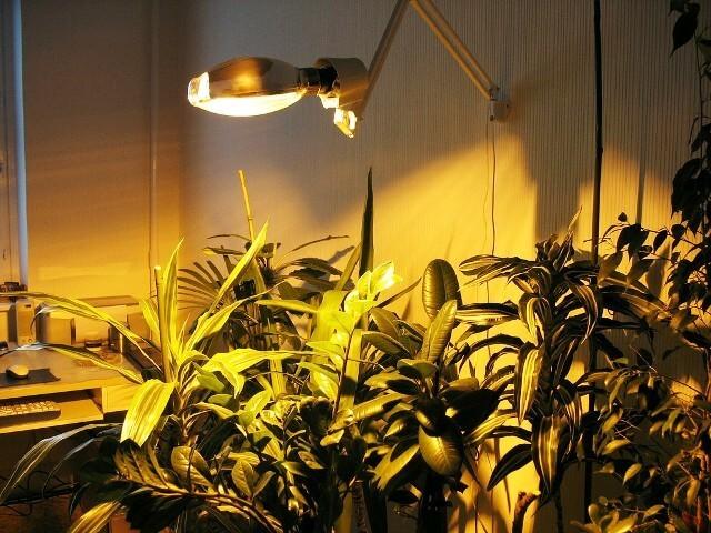 подсветка натриевой лампой