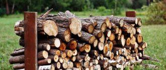 Какие породы деревьев лучше всего подходят для растопки бани
